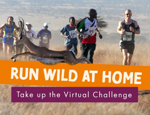 Announcing the Virtual Lewa Safari Marathon Challenge 2020